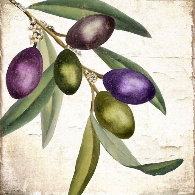 Olive Branch IIi by Mindy Sommers Victoria Crawford Olives
