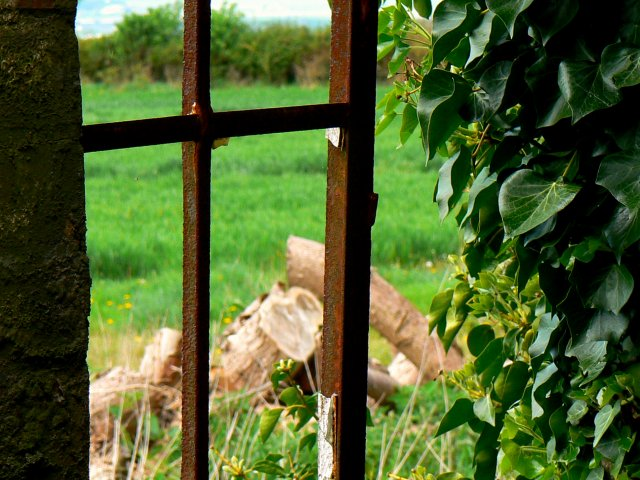 Inside_looking_out_of_another_window,_Nebo_Farm,_Clyffe_Pypard_-_geograph.org.uk_-_414422
